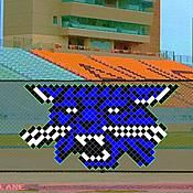 This 4 Foot Wildcat Head Put In Cup Set features three colors in your choice to match with your school or team. Pep Rally, Cupping Set, School Spirit, Chevrolet Logo, Fence Decorations, Yard, Football, Colors, Soccer