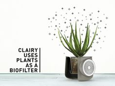 clairy purificateur d'air plante design kickstarter 02