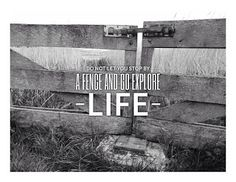 Do Not Let You Stop By A Fence And Go Explore Life