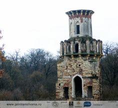Ruins of Teleki Castle in Luna de Jos, Cluj Pisa, Notre Dame, Castles, Tower, Building, Travel, La Luna, Rook, Chateaus