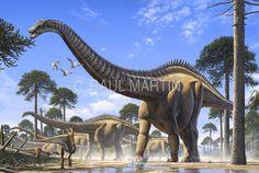 Raúl Martín: Supersaurus