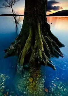 Loch Lomond Photo by Simon Butterworth