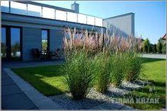 Znalezione obrazy dla zapytania nowoczesny ogród minimalistyczny