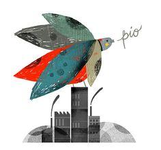 Birdie-kong, Mar Hernández