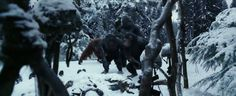 Archives Of The Apes: War For The Planet Of The Apes