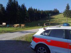 Erste Hilfe outdoor, Notfälle in den Bergen, Nationalpark Nordschwarzwald