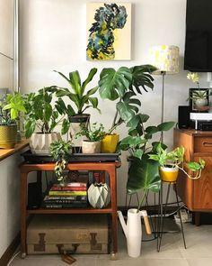 plant-filled corner