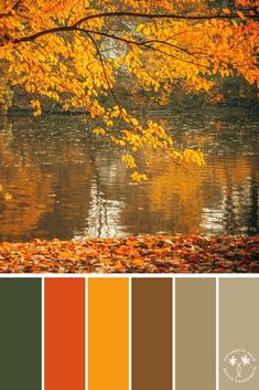 Image Color Palette 170 by Tracey Bureau Colour Pallette, Colour Schemes, Color Patterns, Color Combos, Autumn Color Palette, Color Blending, Color Mixing, Autumn Leaf Color, Autumn Leaves