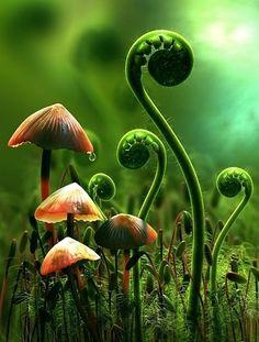 alice, alice in wonderland, art, cg art, champignon vert macro herbe, color