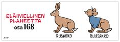 Eläinsanasto | NEN sarjakuvat Finland, Winnie The Pooh, Peanuts Comics, Disney Characters, Fictional Characters, Funny, House, Egg As Food, Home