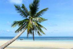 Ich reise nicht, finde aber Blogs gut: Die 50 besten Reiseblogger.