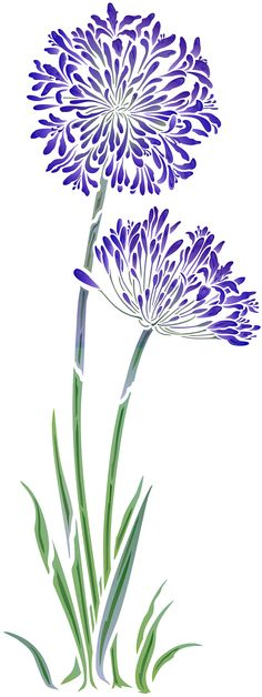 Agapanthus Stencil-means devotion African Lily Flower Stencil African Lily, Image Deco, Stencil Patterns, Fabric Painting, Botanical Art, Flower Art, Embroidery Designs, Drawings, Floral