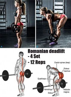 a powerlifting deadlift workout Fitness Workouts, Gym Workout Tips, Weight Training Workouts, Butt Workout, Fitness Tips, Hip Thrust Workout, Powerlifting Training, Hamstring Workout, Bodybuilding Training