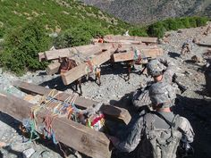 Soldiers of 1st Battalion, 32nd Infantry Regiment, intercept illegal timber as it is smuggled through the Narang Valley in Afghanistan's Konar province. Donkeys are the primary way that timber smugglers are able to export the timber without detection over the rough terrain of the Afghanistan-Pakistan border. Courtesy: wwwarmy.mil  The United States Army, (USA).