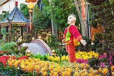 Chinese New Year Las Vegas at the Conservatory & Botanical Gardens at Bellagio Chinese New Year Decorations, New Years Decorations, 2015 Chinese New Year, Chinese Party, Las Vegas Attractions, New Year Celebration, Conservatory, Botanical Gardens, Celebrities