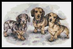 Dachshund puppies counted cross stitch kit