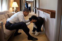 #Obama and Bo