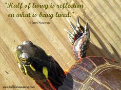 Half of living is reflection on what is being lived. ~Henri Nouwen