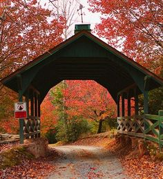 Bucket list item: drive the roads in Blue Ridge, Georgia, in the fall to take in all the beautiful colors.