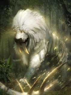White lion, saber teeth