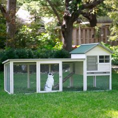 Boomer & George White Wash Outdoor Rabbit Hutch with Extended Run - A cozy house and extended run area mean your critters will be protected and active in the Boomer & George White Wash Outdoor Rabbit Hutch with Extended...