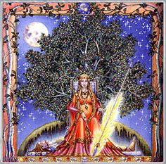 In Celtic astrology, the zodiac is based on the trees that the Druids held sacred. It was believed that the trees themselves expressed personal characteristics that could then be associated with particular months of the year. Celtic Zodiac Signs, Celtic Astrology, Astrology Signs, Wiccan, Pagan, Magick, Witchcraft, Tres Belle Photo, Holly Tree