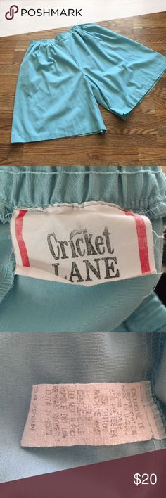 """Vintage Culottes Vintage Cricket Lane culottes with elastic waist, front pleats, and pockets. Wear them in summer with sandals, or tights in the fall.                                           Waist : 17-21""""  Length: 25"""" Vintage Shorts"""