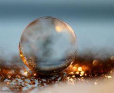 Evening sun | Macro foto van Kvinne | Zoom.nl Nog een foto van mijn macroserie met waterballetjes en glitter