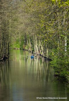 #Wasserwandern im #Spreewald  www.spreewald-hotel-stern.de