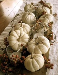 White gourds and bittersweet for table decor.