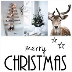 A simple strong message  > To one and all : Merry Christmas