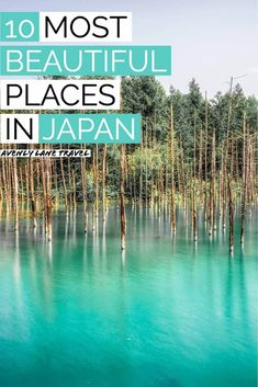 10 Most Beautiful Places in Japan! Planning a trip to Japan? There are so many things to do in Japan that you have probably never heard of! This Japan travel guide will help you plan your trip and find all the best things to do in Japan. #Japan #japantravel #beautifulplaces #travelinspiration #asiatravel Japan Travel Guide, Asia Travel, Beautiful Places In Japan, Most Beautiful, Amazing Destinations, Travel Destinations, Travel Abroad, Plan Your Trip, Places To Travel