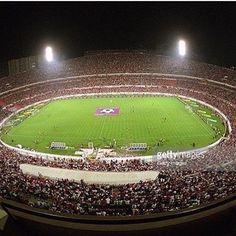 Setembro 2001  #slbenfica#estadiodaluz#lisboa#benfica#epluribusunum#1904#aguiasdefranca