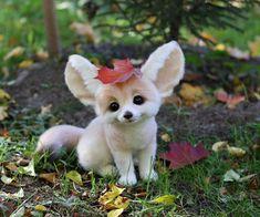 84 Mejores Imágenes De Perritos Chiquitos Cute Dogs Cute Puppies