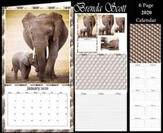 - 2020 Mini Calendar You get 6 pages Page 1 - Topper with pyramage Page 2 - Matching note paper to put inside Page 3 - P. Calendar 2020, Cream Roses, Calendar Design, Note Paper, Cute Bunny, Paper Background, Craft Fairs, Baby Boy Shower