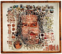 Michael Mapes is an artist who creates bizarre portraits out of various materials which resemble the equipment used to document specimens. These items such as insect pins, pinning foam, glass vials… Collages, Collage Art, Dna Art, Illustrations, Art Plastique, Photomontage, Medium Art, Installation Art, Art Photography