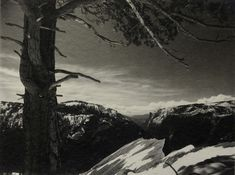 Ansel Adams On the Heights, Yosemite National Park, CA, 1927 The Ansel Adams Gallery