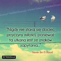 Nigdy nie staraj się dociec przyczyny miłości... #Barud-Nemer-Ibn-El,  #Miłość