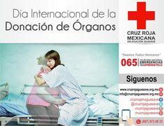 """Desde 1998, cada 30 de Mayo se celebra Día Internacional de Donación de Órganos en homenaje al nacimiento hijo de primera mujer de trasplante hepático en hospital público de Argentina. """"Queremos abrazar a todo paciente que esperan un trasplante, y sus familias. Y celebrar el aumento de la donación de órganos"""" #CruzRojaGuasave"""