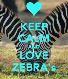 love zebras