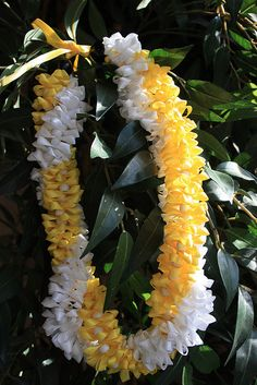 Lovely Lei