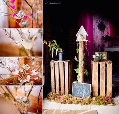 chá de fraldas-fotografia-joinville-esperando menina-gravidez-brincadeiras-decoração-passarinhos-festa menina_0030