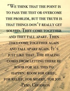 Positive Quotes : We think the point is to pass the test. - Hall Of Quotes Quotable Quotes, Wisdom Quotes, Quotes To Live By, Me Quotes, Compassion Quotes, Sunday Quotes, Buddhist Wisdom, Buddhist Quotes, Falling Apart Quotes