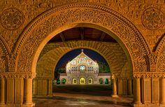 Alumni Blogs : Every Day Stanford : Stanford Alumni Association