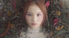 All I want for Christmas is you. Bom&Hi Disney Fairies, 2ne1, Mori Girl, Daydream, Kdrama, Creepy, Art Photography, Kpop, Rose
