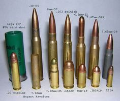 Some of the most Common Ammunition Compared in Size 30 Carbine, Moslem, Military Humor, Police Humor, Military Girl, Guns And Ammo, Revolver, Self Defense, Shtf