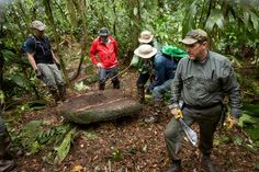 Lost City Discovered in the Honduran Rainforest