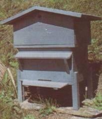 réglementation de l'installation d'une ruche au jardin