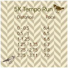 5K 3 mile treadmill tempo run cardio workout (I would have to take 1/2 mph off each interval and work my way up)