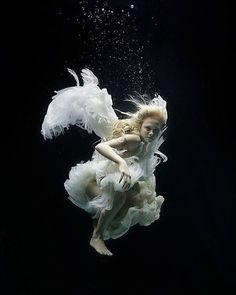Floating Angels: Underwater Photos by Zena Holloway